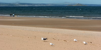 Another good summer for Scotland's Bathing Waters