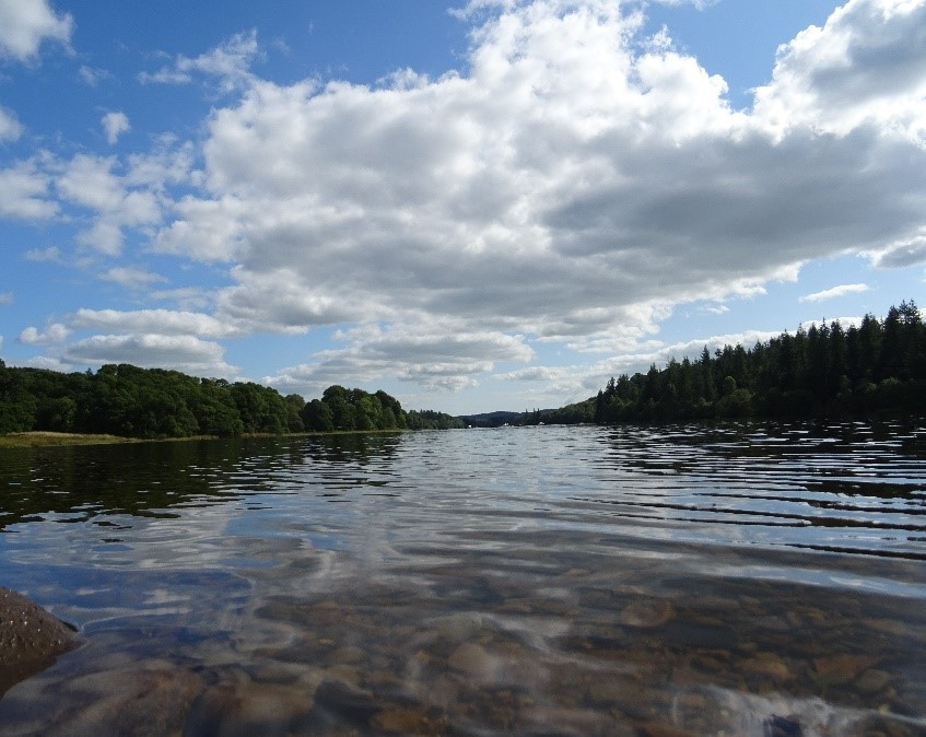 A study of the fish population in Loch Ken is published